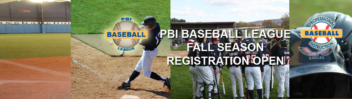 Pbi Baseball League Fall Season Professional Baseball Instruction